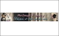 Animal-Fancy